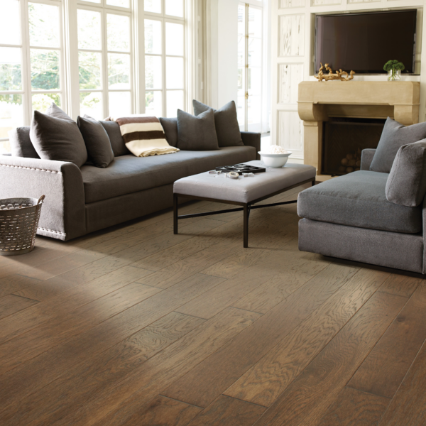 Mineral King by Shaw Floors