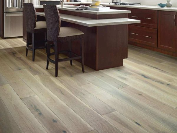 Magnificent SFN by Shaw Floors